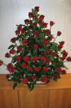 Růže koš 60